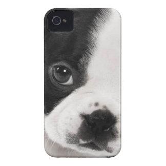 Boston Terrier Funda Para iPhone 4 De Case-Mate