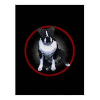 Boston Terrier:  Glowing Postcard