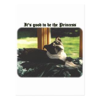 Boston Terrier:  Good to be Princess Postcard