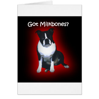 Boston Terrier:  Got Milkbones? Card
