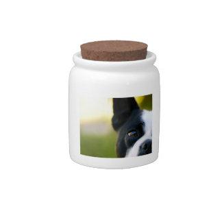Boston Terrier Half Face Candy Jar