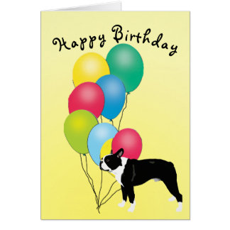 Boston Terrier Happy Birthday Card