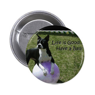 Boston Terrier Have a Ball Pinback Buttons