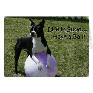 Boston Terrier:  Have a Ball! Card