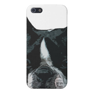 Boston Terrier head case Cases For iPhone 5