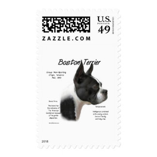 Boston Terrier History Design Postage Stamps