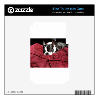 Boston Terrier Holly Skin For iPod Touch 4G