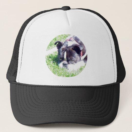 Boston Terrier:  How Cute Trucker Hat