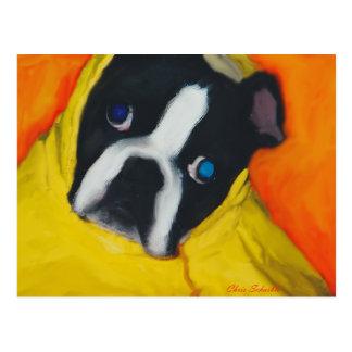 Boston Terrier in a yellow rain coat Postcard