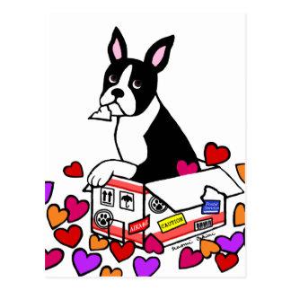 Boston Terrier in the Box Cartoon Postcard