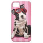 Boston Terrier iPhone SE/5/5s Case