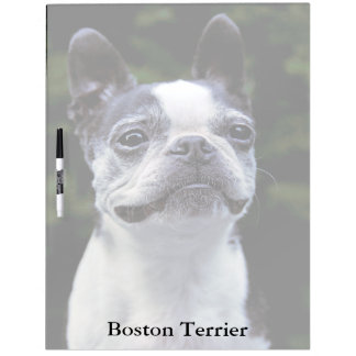 Boston Terrier Large Dry Erase Board