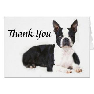 Boston Terrier le agradece cardar Tarjetón