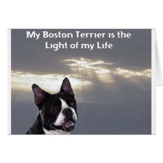Boston Terrier:  Light of my Life Card