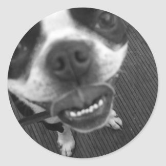 Boston Terrier Lips Classic Round Sticker