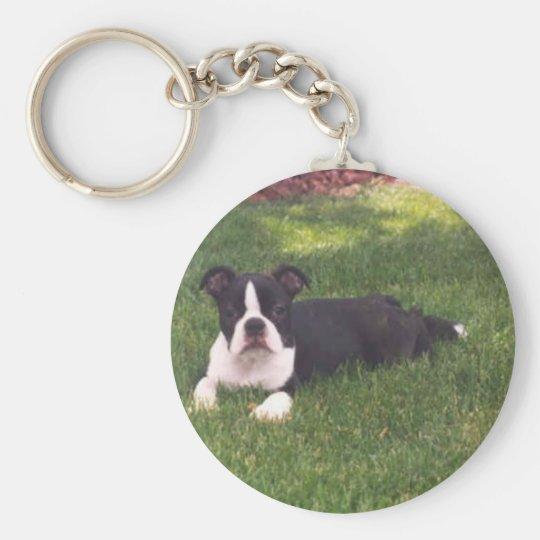 Boston Terrier:  Little Doll Keychain