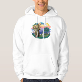 Boston Terrier ((looking up) Hooded Pullover