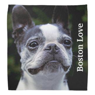 Boston Terrier Love Bandana