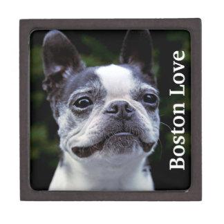 Boston Terrier Love Jewelry Box