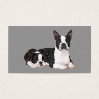 Boston Terrier Lover Business Card