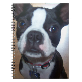 BOSTON TERRIER LOVERS NOTEBOOK
