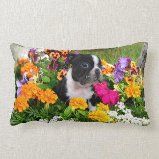 Boston terrier lumbar pillow