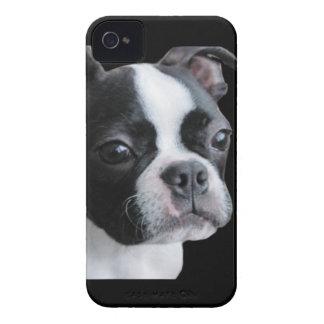 Boston Terrier Más que mi parte del cuteness Case-Mate iPhone 4 Protectores