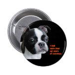 Boston Terrier:  Más que mi parte del cuteness Pins