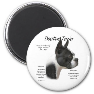 Boston Terrier Meet the Breed - Magnet