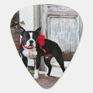 Boston Terrier - Miles Guitar Pick