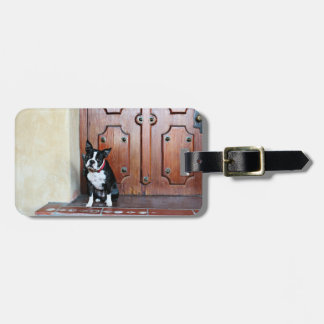 Boston Terrier - Miles Tags For Bags