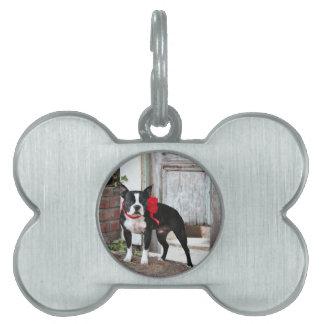 Boston Terrier - Miles Pet Name Tag