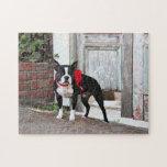 Boston Terrier - millas Rompecabeza