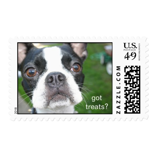 boston terrier Mochi Postage