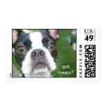 boston terrier Mochi Stamps