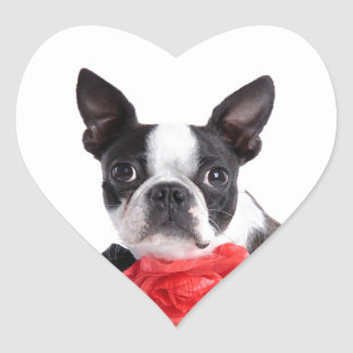 Boston Terrier Mollie mouse child Heart Sticker