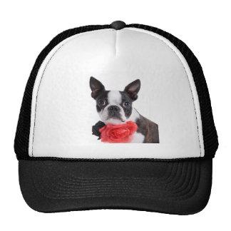Boston Terrier Mollie mouse child Trucker Hat
