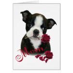 Boston Terrier  Mom Greeting Card