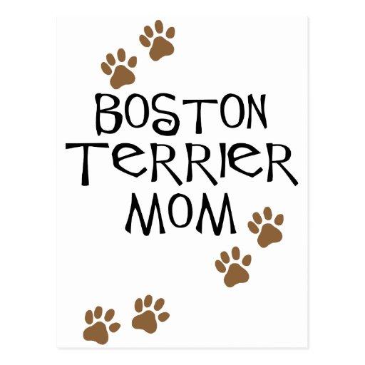 Boston Terrier Mom Postcard