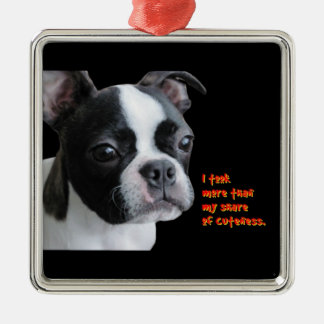 Boston Terrier:  More than my share of cuteness Christmas Tree Ornaments