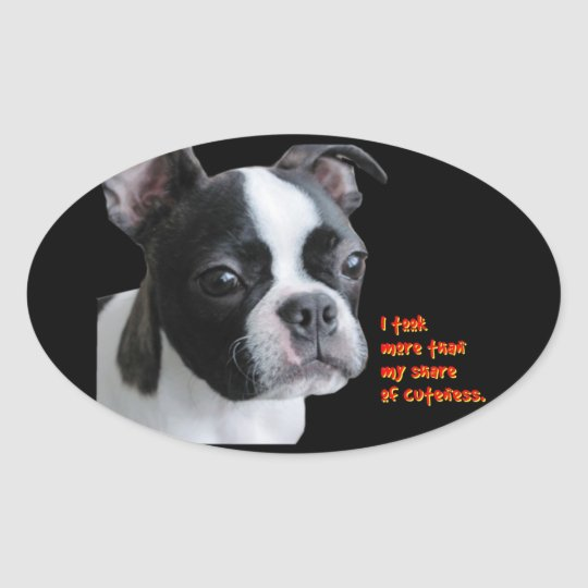 Boston Terrier:  More than my share of cuteness Oval Sticker