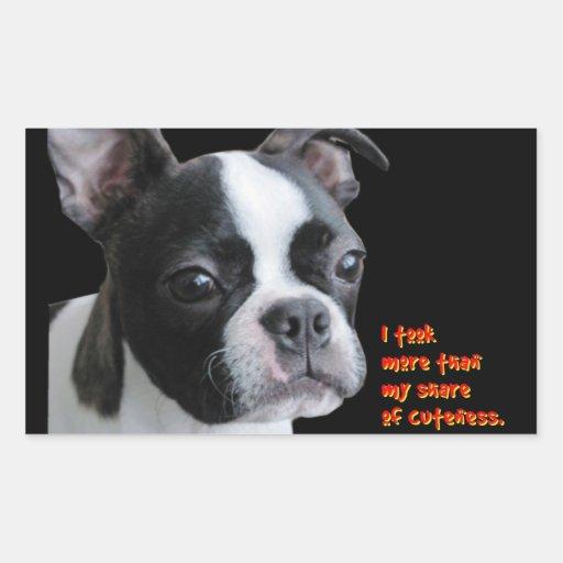 Boston Terrier:  More than my share of cuteness Rectangular Sticker