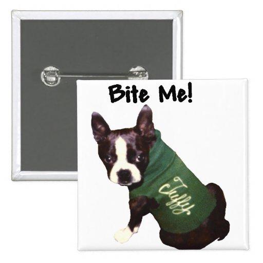 Boston Terrier:  ¡Muérdame! Pin Cuadrado