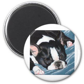 Boston Terrier Nap Magnet