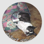 Boston Terrier:  ¿OnStar? Pegatina Redonda