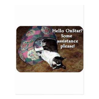 Boston Terrier:  OnStar? Postcard