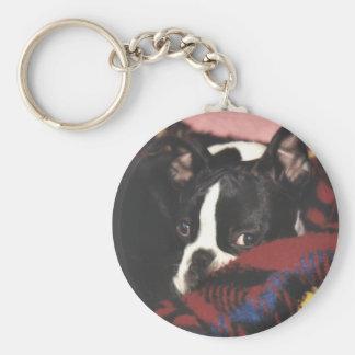 Boston Terrier:  Peekaboo Llavero Redondo Tipo Pin