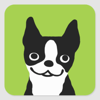 Boston Terrier - perro sonriente lindo Pegatina Cuadrada