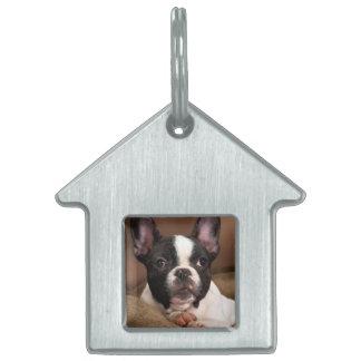 Boston Terrier Pet Tag