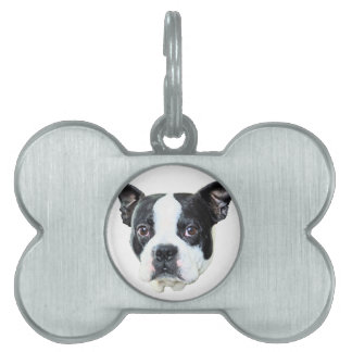 Boston terrier pet tags